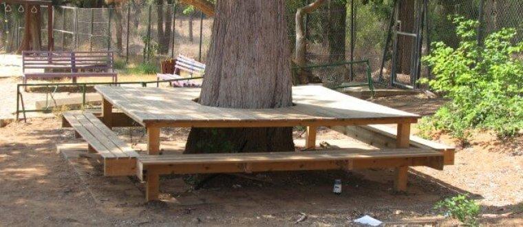 שולחן סביב עץ בחצר בית ספר – אדריכלות בטבע